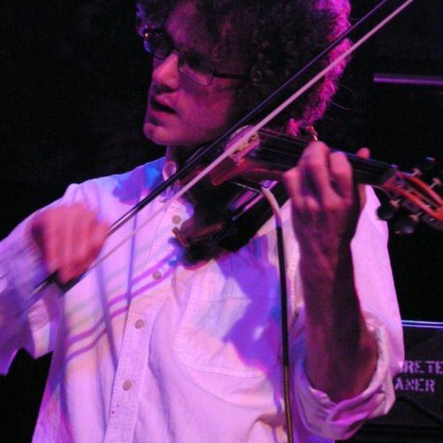 Foxie-violin