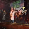 Festers Guitar