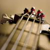 Chuck Jones - Bass