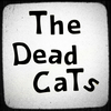 Tommy Golden of The Dead Cats