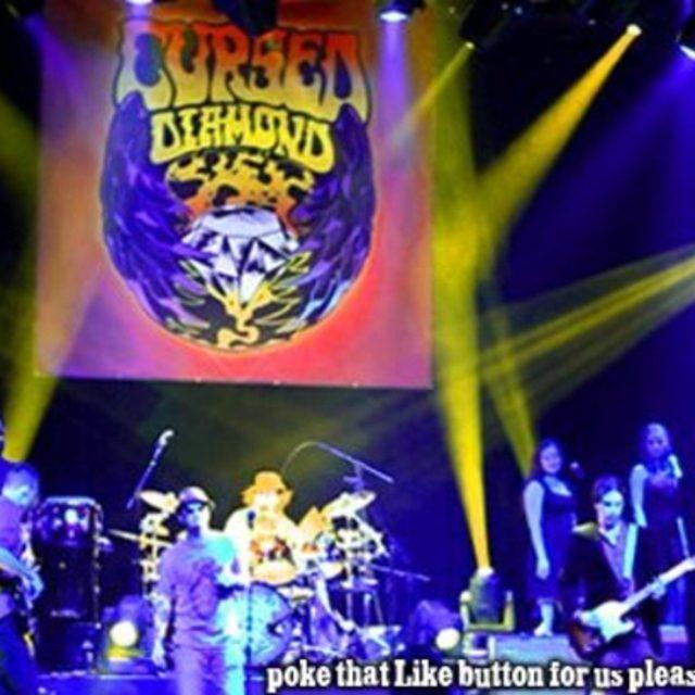 Cursed Diamond - authentic Black Crowes Tribute Band