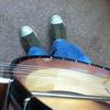 5 strings
