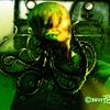 Spiderwomb