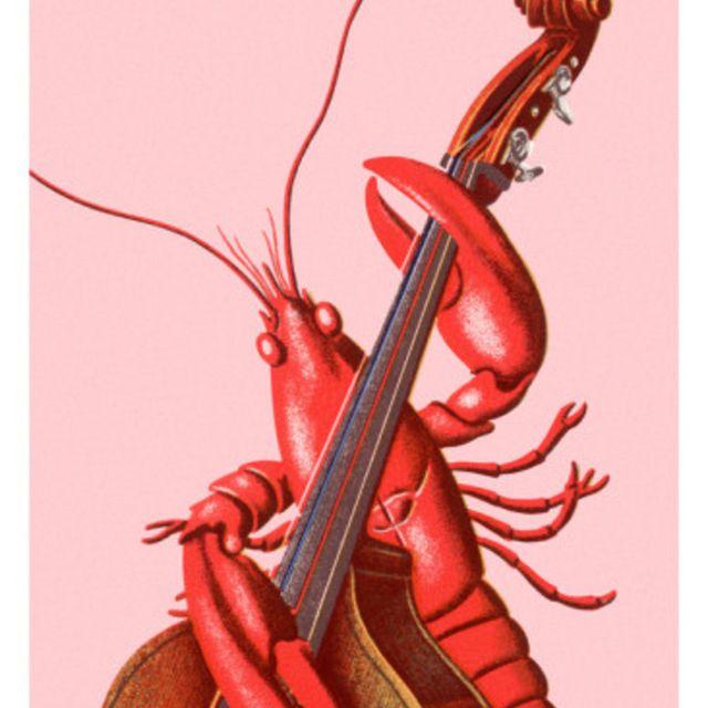 Upright/ Electric Bass seeking others...