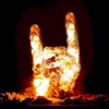 Hard Rock - Metal