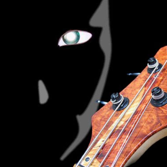 The Bass Mercenary