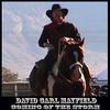 david539353