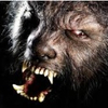Muddy Wolf Johnson