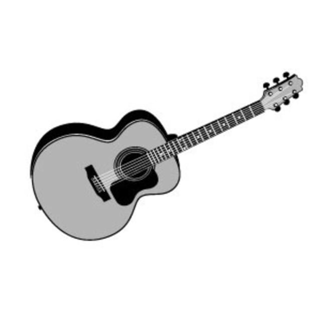 guitarplayer100
