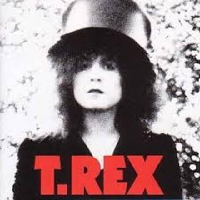 TRex563463