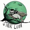 Strix Luna