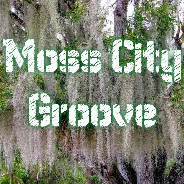 Moss City Groove